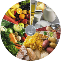 b_300_200_16777215_00_images_Ano_letivo_19-20_1P_roda_alimentos.png